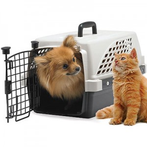 london-relocation-pets-travel
