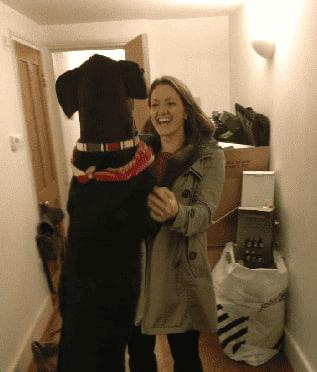 pet friendly rent london