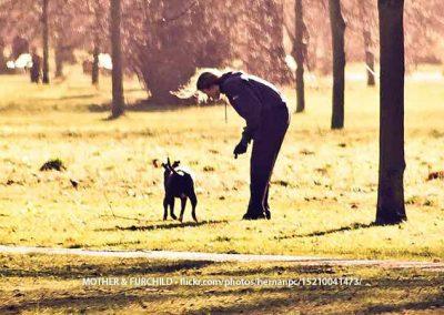 Hyde Park Playtime