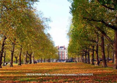 Green Park Autumn