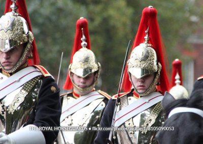 The Royal Horsekids