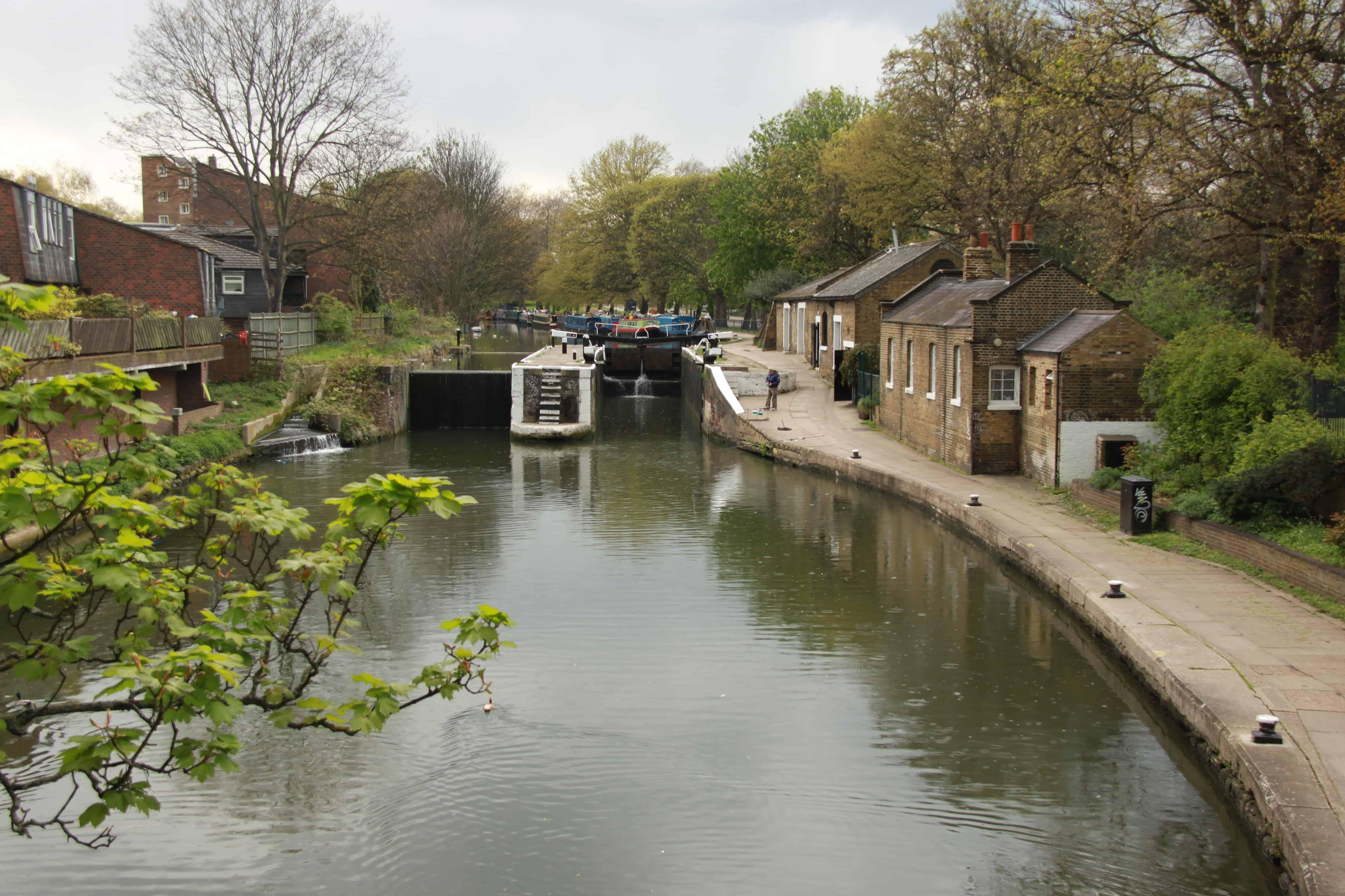 South Hackney rentals