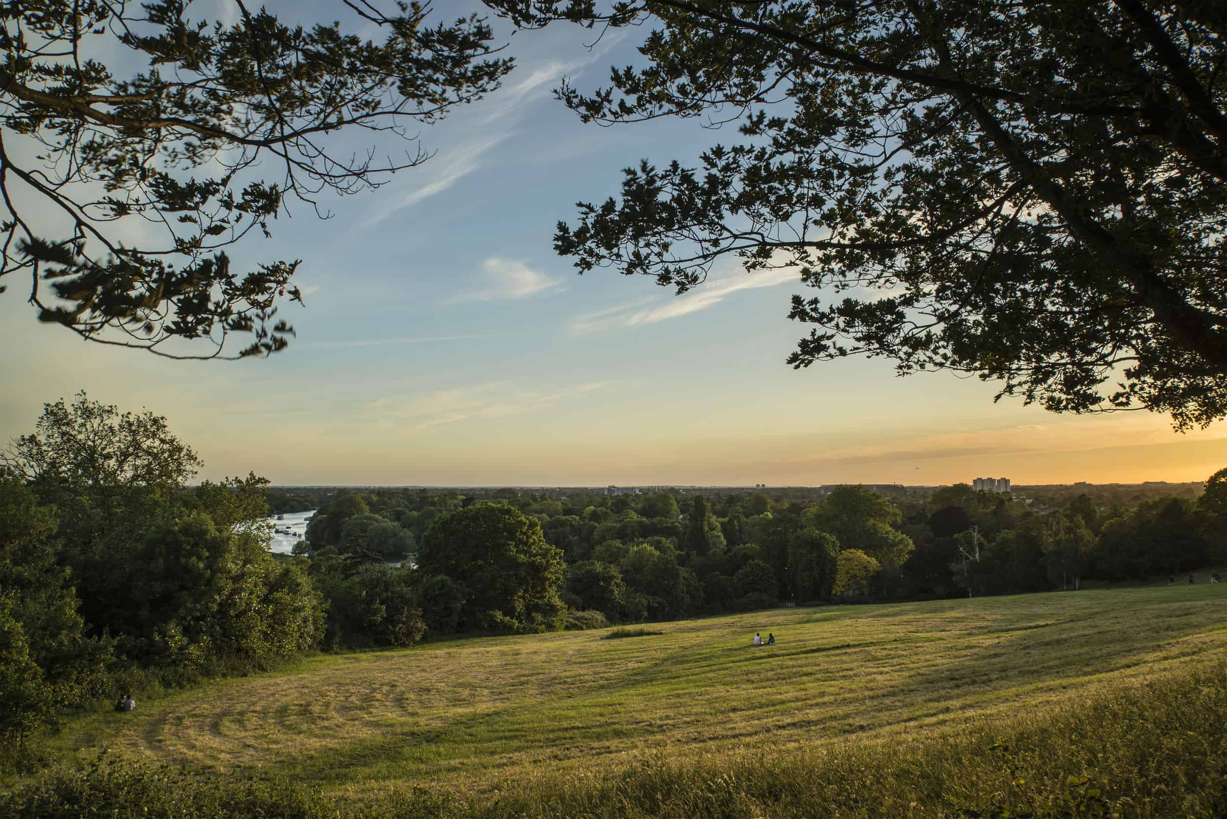 View from Richmond Hill