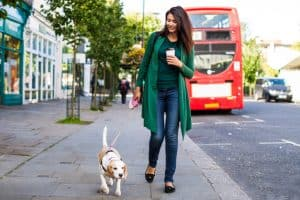 moving to London with pets