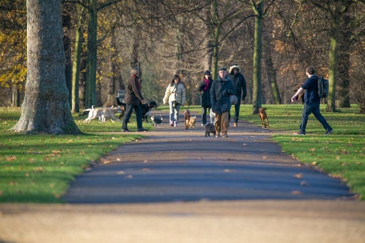 best dog parks in London